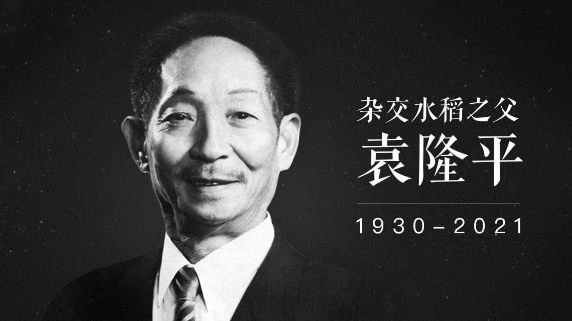 """中国""""杂交水稻之父""""—袁隆平逝世"""